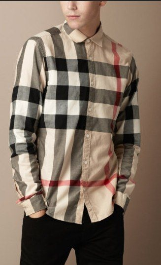 Burberry men shirts-B19582